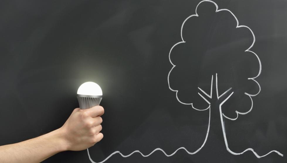Las bombillas Led no afectan negativamente a nuestro medio ambiente